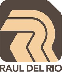 Raúl del Río